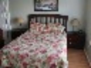 Large Queen Master Bedroom (bedding is new than that shown)