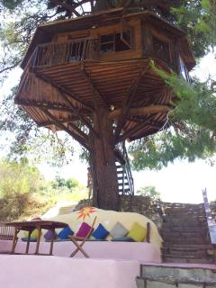 ever wonder what its like to sleep in a tree...make your dream a reality, and enjoy the peace