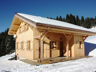 Chalet 6/8 pers - Morzine - Close to bike slopes