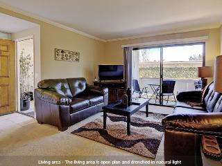 Comfort & Convenience in Orange County, Laguna Niguel