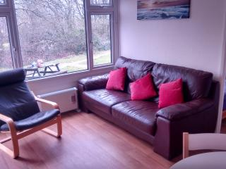 Newly installed leather sofa and chair