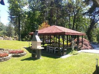 Villa Violetta in Luino with pool and garden