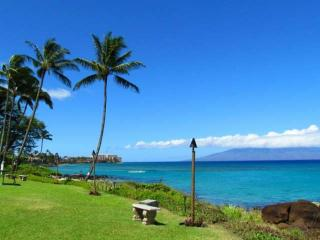 Ocean view with air conditioning -Lanai-walking distance to Farmers Market-Free