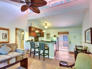 Come Visit us!  -  Lahaina town location.  Saltwater Infinity Pool-BBQ-Air Condi