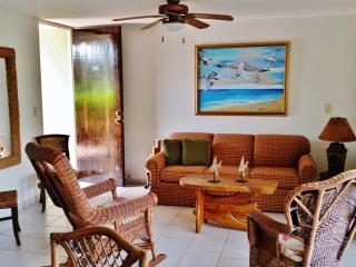 New Listing! Precious 3BR Vega Baja Oceanfront Condo w/Wifi, Pool Access, Huge Private Terrace & Gorgeous Ocean Views - Near Beaches, Horseback Riding, Bike Trails, Outdoor Activities & More!