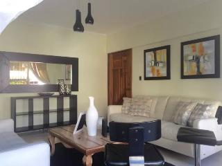 Elegant and centrical apartment 2, Santo Domingo