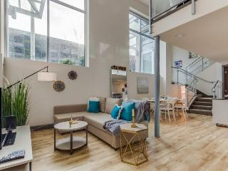 Dog-friendly designer condo with a loft, sky lounge & gym, near downtown!