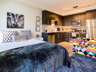 Downtown dog-friendly studio with a private balcony - close to everything!