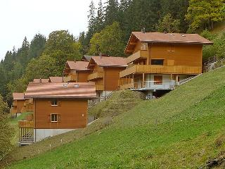 4 bedroom Apartment in Wengen, Bernese Oberland, Switzerland : ref 2300534