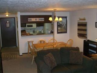 Chateaux - 2 Bedroom Condo Mountain View #302 - LLH 59889, Crested Butte