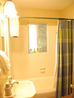 The bathroom includes a shower and tub.