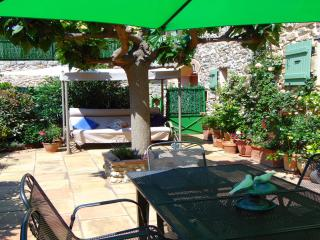 Charming 200yo Barn conversion (sleeps 6), Ventenac-en-Minervois