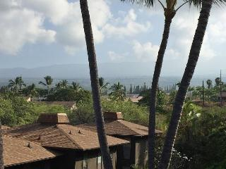 Ocean Views, Walking Distance to Kona Town, Beaches, Restaruants & Shops!, Kailua-Kona