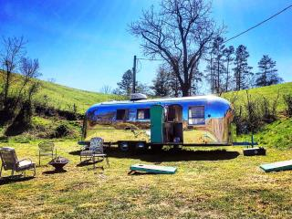 Gorgeous airstream in magical setting, Asheville