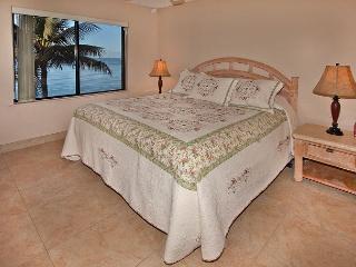 #410 - 2 Bedroom/2 Bath Ocean Front unit on Sugar Beach!, Kihei