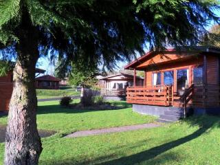 Birch lodge 12 - Family accommodation on the Southern West Coast, New Galloway