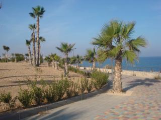 3005 Playa Elisa 3005