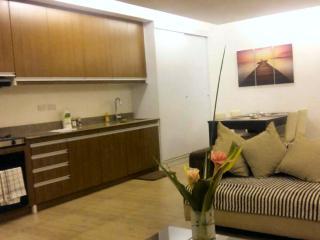 B1 Davao Apartment Rentals Studio Apt.