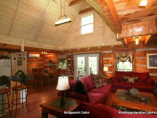 Riverfront Valle Crucis Cabin*Hot Tub*Firepit*AC, Banner Elk