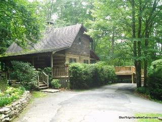 Cozy Log Cabin Near ASU & River*Hot Tub*Firepit, Valle Crucis