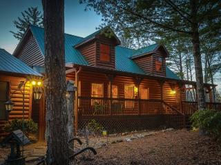 Private Pet Friendly Rental Cabin in Blue Ridge Georgia