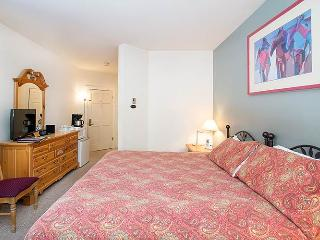 Elegant Town Of Telluride 1 Bedroom Hotel Room - CI51
