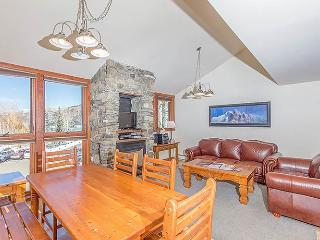 Charming Town Of Telluride 3 Bedroom Condo - TL338