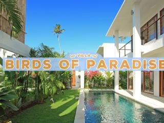 Great 3 Bedroom Private Villa with Pool, Tanjung Benoa