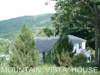 Banner Elk Mountain Vista House with WiFi + Sauna