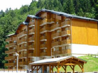 Contemporary Ski Apartment Sleeps 4/6, Morzine