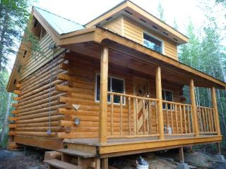 Stay in Cozy Alaskan Log Cabin and enjoy our Winter Dog Sled Rides