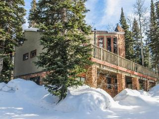 Secluded, dog-friendly cabin located in the center of town