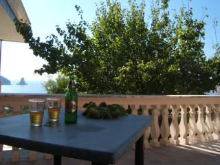 SeaView Family Studio 5 min walk to beach &Pool, Agios Gordios