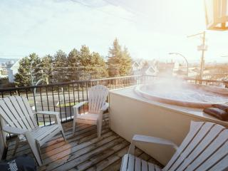 Mountain View Apartment with Hot Tub, Vancouver