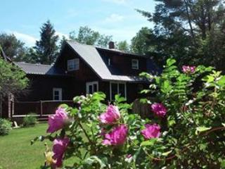 Memory Lane Vacations ~ Four seasons in Western ME