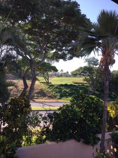 View of golf course across the street from bedroom lanai