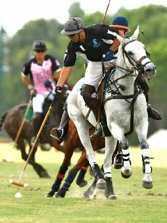 Wellington is world famous for polo. The International Polo Club is just 3 miles away.