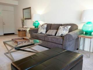 Furnished Apartment at Jamboree Rd & Kelvin Ave Irvine