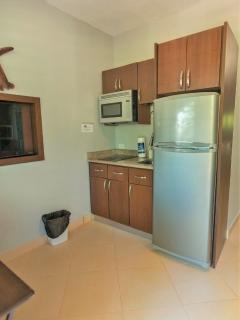 Apt 3 with tall fridge