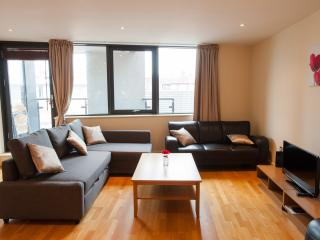 Superior Large two bed apartment, London