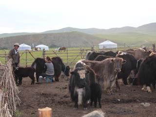 Mongolian nomadic family in Ulaanbaatar