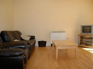 Modern spacious Holiday Apartment which sleeps 6, Galway