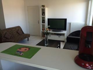 Appartement les 3 frontieres, Huningue