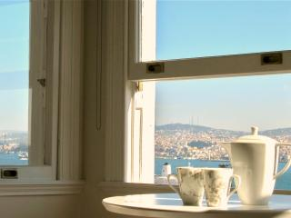 elegance and fantastic views in galata, Istanbul