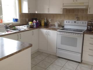 Large House & Parking by Campus 20min to Downtown, Toronto
