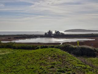 Heron View, Bodega Bay
