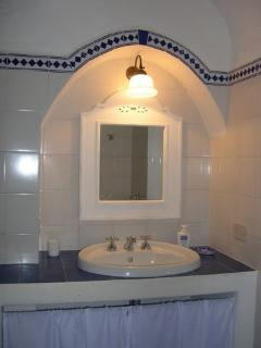 Lower level bathroom w/ shower, toilet