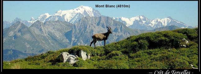 Mont  Blanc- vue de Crêt de Tervelles