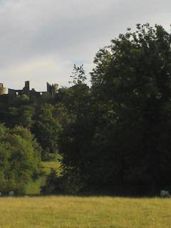 Dinefwr Castle and parkland