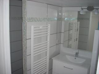 salle de bains 2 avec douche